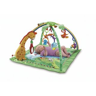Fisher-price-play-gym